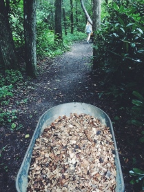 I pushed wheelbarrow after wheelbarrow down the trail...